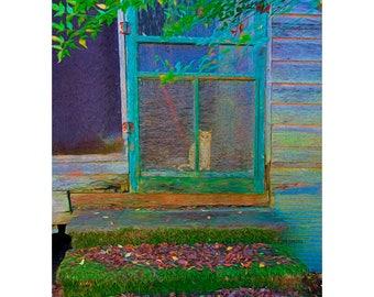 Orange Tabby Cat, Ginger Kitty, Screen Door, Old House, Glicee Print 8x10 11x14 16x20 - Granny's Cat - Korpita