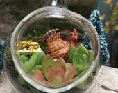 The Hen That Laid the Golden Present Succulent Terrarium