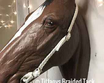 bridle, headstall, simple  bridle, paracord headstall, braided headstall, horse tack, colored headstall
