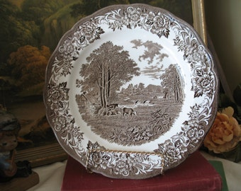 Plate 1A Royal Staffordshire J & G Meakin dinner