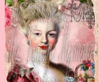 Pink Marie Antoinette Fabric Block Quilts Crafts Altered Art Pillows Tote Bags Applique NMA2