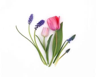 Happy flowers ~ greeting card ~ stationery ~ botanical art