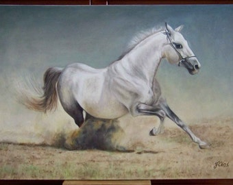 Original Painting, White Horse ARAB, Realistic Oil Painting on Canvas 19,6 x 27,5 in.