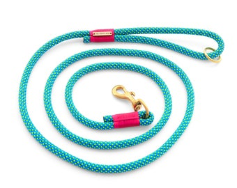 Jewel dog leash, turquoise climbing rope dog leash with brass hardware and fuchsia pink accents in 4' and 6' lengths
