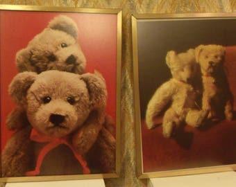 Bear Prints Gold Framed