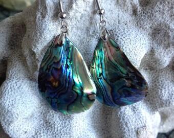 New Zealand Abalone Shell Dangle Earrings - Abalone Shell Dangle Earrings - Vtg. Abalone Earrings - Abalone Shell Earrings