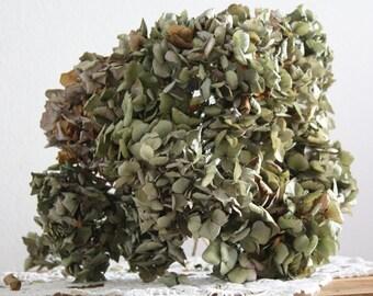 15 Dried-Hydrangea-flowers-DIY-craft-bouquet, hortensia séché, spring decoration