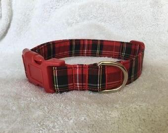 Royal Stewart Tartan  Design Dog Collar