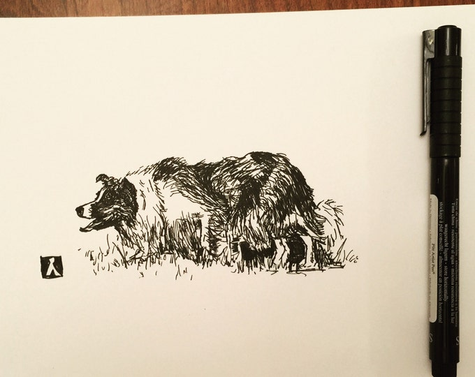KillerBeeMoto: Limited Print of Pen Drawing of a Border Collie Sketch Sheep Dog Sketch 1 of 50.