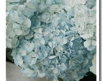 Blue Hydrangea Fine Art Print Home Decor Wall Art
