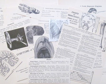 Vintage medical paper: pack of 20 original book pages, pictures and diagrams. Ephemera for scrapbooks, collage, altered art EP477