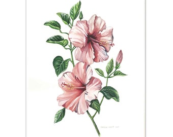 Hibiscus Flowers Watercolour painting - Limited edition print (100 only)