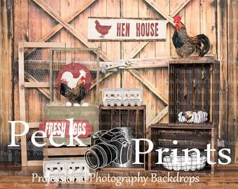 7ft.x6ft. Barn Door with Lock Vinyl Photography Backdrop, Barn Background
