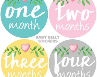 Baby Month Stickers, Monthly Baby Stickers, Monthly Milestone Stickers, Baby Monthly Stickers, Baby Belly Stickers, Heart