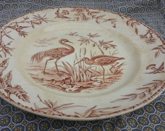 Ridgway Indus Aesthetic Movement Transferware Dinner Plate