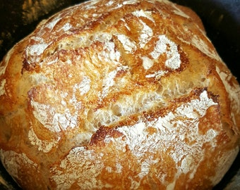 Dried SPELT sourdough starter dehydrated active probiotic culture Make your own homemade bread DIY Ancient grains no yeast fermented