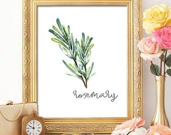 75% OFF SALE - Herbs Rosemary - 8x10 - Printable Art, Dorm Decor, Wall Art, Kitchen Art, Home Decor, Herb Art, Herb Prints, Herb Wall Art