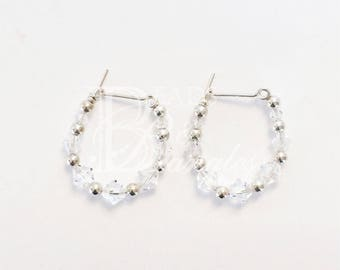 Silver and Clear  Earrings