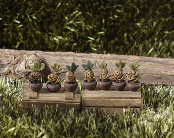 Mini Mandrakes.Halloween. Miniature Mandrake root. Dollhouse witches . On a scale of 1/12 .