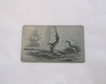 Sea Monster Magnet