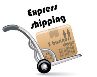 Express Delivery Upgrade. Fast Shipping Upgrade With DHL, TNT or DPD - 1-3 Business Days Delivery