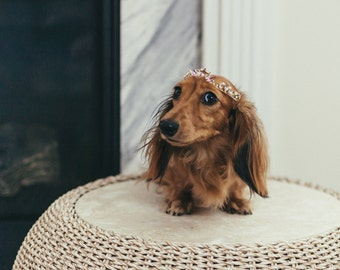 LIA glamorous crystal wedding tiara for dogs - small, medium or large