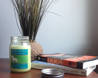 Scented Candle, Green Tea and Lemongrass Soy Candle, Dog Lover Gift, Gift for Her, Gift for Him, Collies Favorite Soy Candle 16oz Mason Jar