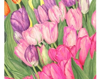 Field of Tulips, Painting, Art Print, Watercolor Painting, Colorful Painting of Flowers By Sally Jacobs, Home Decor, Tulip Art