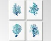 Nautical Prints, Set of 4, Digital Nautical Art, Corals Printable, Nautical Decor, Sea Wall Art, Large Printable, Turquoise Coral, Ocean Art