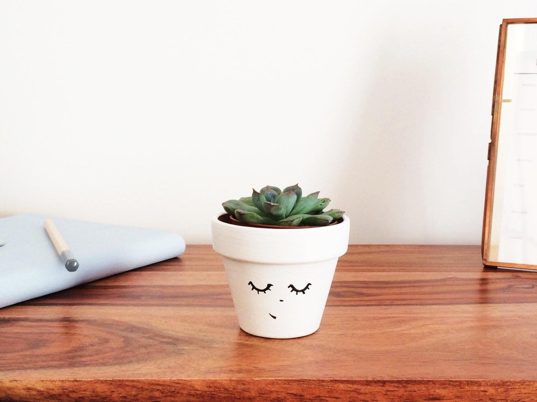 Face Plant Pot Part - 27: ?zoom