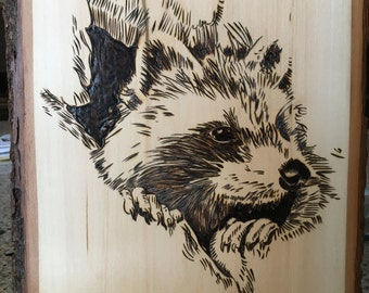 RACOON -WOOD BURNING - Woodburning Art - Pyrography Art - wildlife