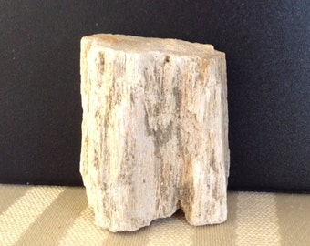 Petrified Wood, Healing Crystal, Healing Stones, Chakra, Reiki