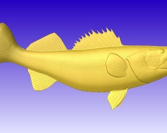 Walleye 3D Vector Art Model for cnc projects or carving patterns in stl file format