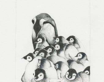 Penguins original pencil drawing framed affordable wall art animal decoration illustration black white home one of a kind animals funny