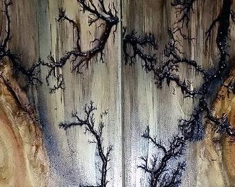 lichtenberg wood electricity
