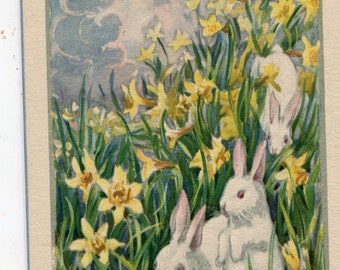 Easter vintage postcard, Happy Easter, White Bunnies at Easter with Daffodils vintage  postcard