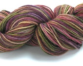 Alpaca Wool Yarn Hand Dyed Yarn Worsted Weight Yarn Soft Multi Colored - Mocha Berry