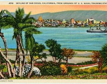 Vintage California Postcard - Skyline of San Diego (Unused)