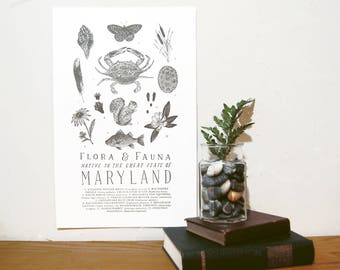 Maryland Field Guide Print