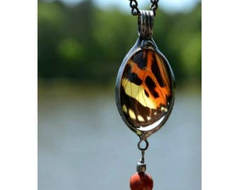 Insect Jewelry, Bug Necklace, Butterfly Wing Necklace, Butterfly Jewelry, Insect Necklace, Nature Lover Gift, Bug Jewelry, Nature Gift (2739