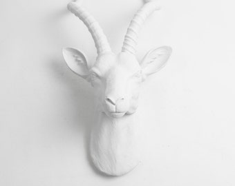 White Faux Taxidermy Antelope Head Wall Mount - The Franny in White Antelope Head - Faux Animal Wall Hanging - Chic Gazelle Wall Decor & Art