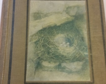 Nests and Eggs - Shown to the Children - Vintage 20s Hardcover Illustrated