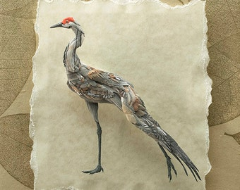 Blank Card - 'Morning Stretch' - Sandhill Crane Paper Sculpture, Print