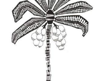 COCONUT TREE, nature illustration, palm tree