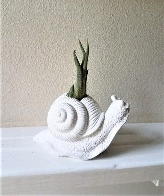 Snail planter, air plant holder, snail sculpture, desk planter, paper weight