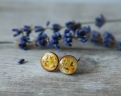 Small Wood Disk with Surgical Stainless Stud Earrings Filled with Resin, Yellow Queen Anne's Lace Flowers
