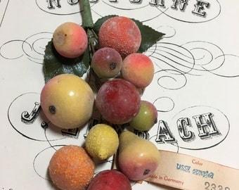 Vintage Millinery Fruit-wonderful!