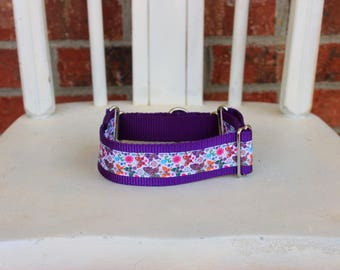 Greyhound Martingale - Purple Butterflies