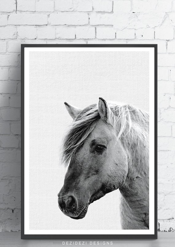 Wall Art Black Horse : Horse print wall art black and white minimalist