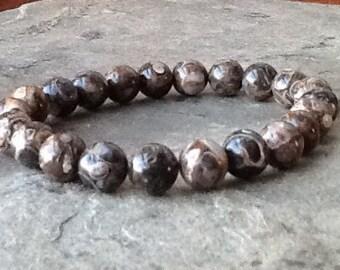 Turritella Agate Stretch Bracelet